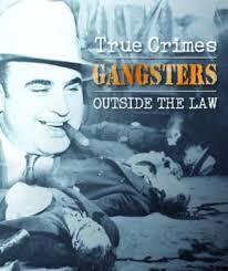 Gangsters Outside the Law-Igloo book