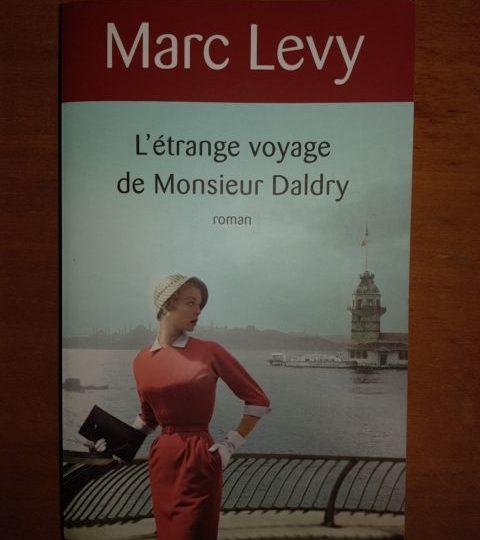 L'etrange voyage de Monsieur Daldry - Marc Levy book